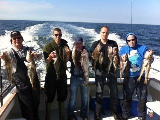 Goede kabeljauw vangst bij Sport Fishing Company