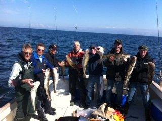 Resultaat van een dag wrakvissen met Sport Fishing Company