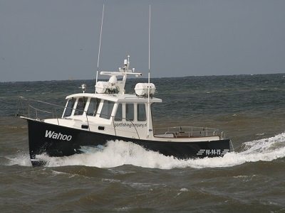 dagje zeevissen nederland