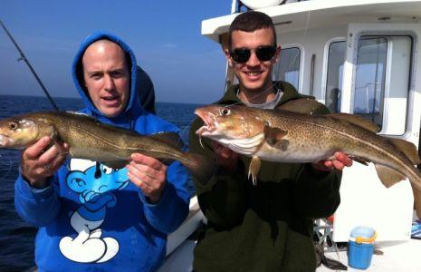 Veel vis gevangen