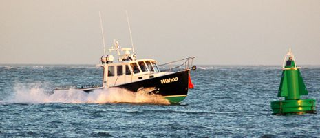 Onze onderneming is een jong bedrijf met echter zeer ervaren schippers aan het roer.